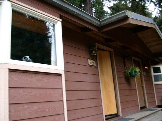Big Sur Campground & Cabins: Cabin (First Night)