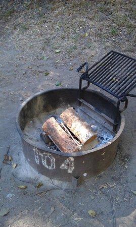 Big Sur Campground & Cabins: Fire Pit