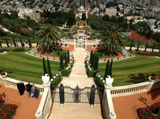 Terrasses baha'ies : vista de los jardines