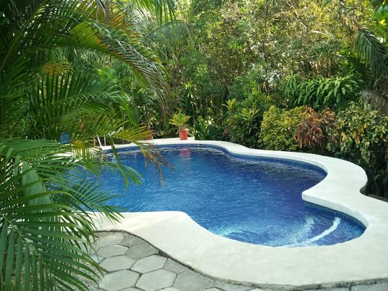Hotel Belvedere - Playa Samara : Pool