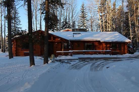 Folk Tree Lodge: Deer Lodge -- View from the front