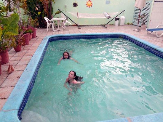 Turquoise Shell Inn: pool