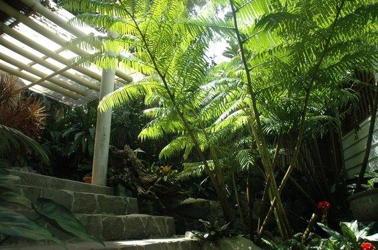 Entrance To The Spa Area Picture Of Callospa Resort Antipolo