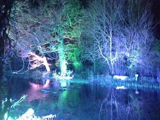 Sheene Mill : The mill pond at night.