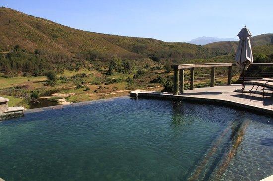 Botlierskop Private Game Reserve: Zicht vanuit het zwembad