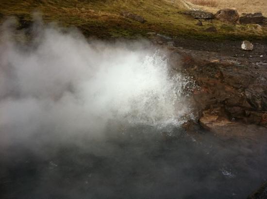 Reykholt, Island: deildartunguhver