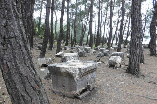 "Phaselis: "" Offener Friedhof"""