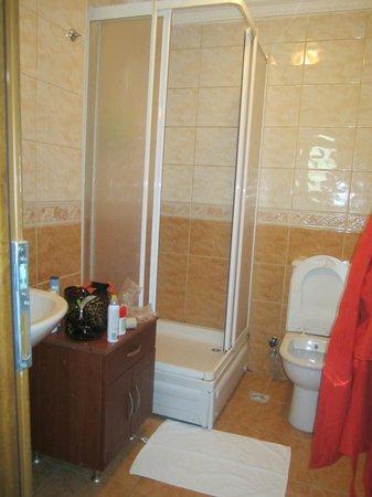 Hotel Emre: Bagno della camera