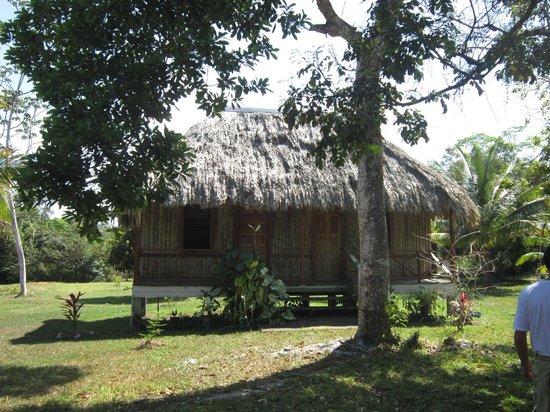 Nature Resort: bungalow