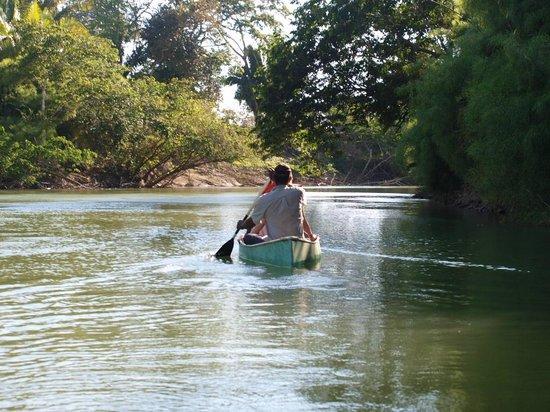 Nature Resort: canoe sur la river belize