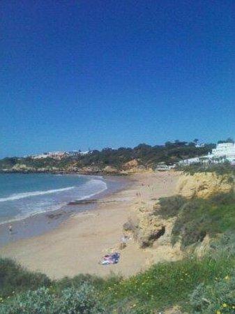 Club Praia da Ouro: View of the Beach from the Apartment