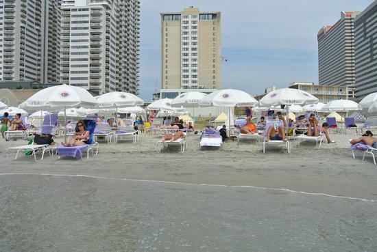The Chelsea: hotel e davanti la spiaggia privata