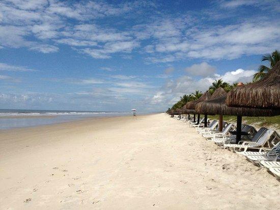 Hotel Transamerica Ilha de Comandatuba: Beach a few meters from the swimming pools