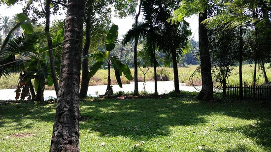 Palmy Lake Resort: view from resort