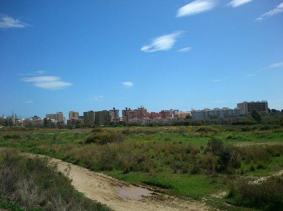 Jardin Botanico Molino de Inca: way to city, wasteland, but it is safe for walking
