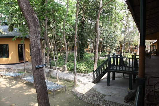 Maruni Sanctuary Lodge: Beautiful environment