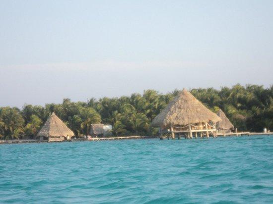 Glovers Reef Basecamp : bungalow sur l'eau