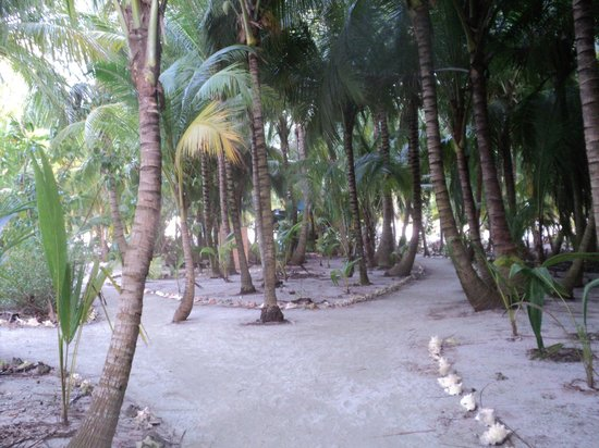 Glovers Reef Basecamp : ballade sur l'atoll