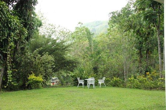 Dehiowita, Sri Lanka: Garden