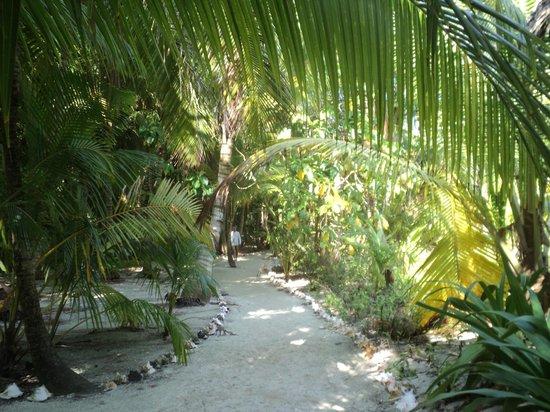 Glovers Reef Basecamp: ballade sur l'atoll