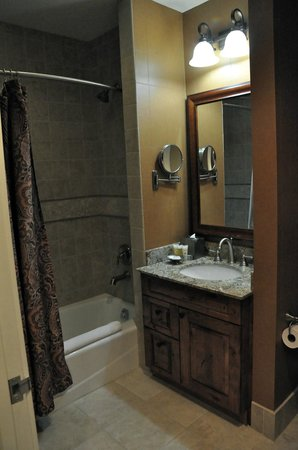 Hyatt Mountain Lodge: Guest bathroom