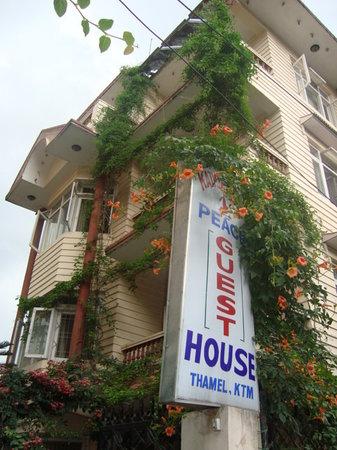 Kathmandu Peace Guest House: Guest house new Block