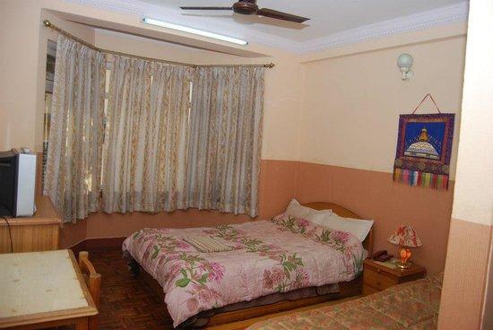 Kathmandu Peace Guest House: Guest house Room