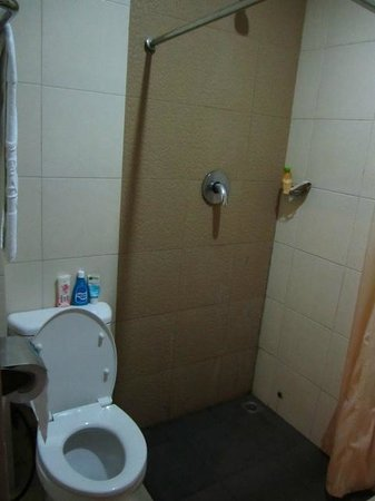 Royal Mamberamo Hotel: small toilet, not so clean shower curtain