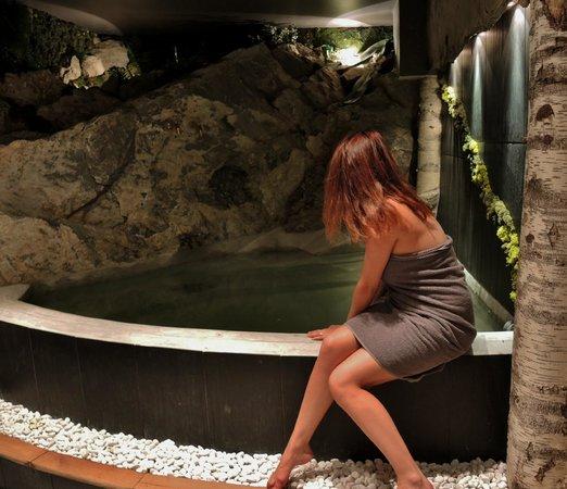 Green ecolodge hotel valdeblore france voir les tarifs et 211 avis - Green ecolodge mercantour ...