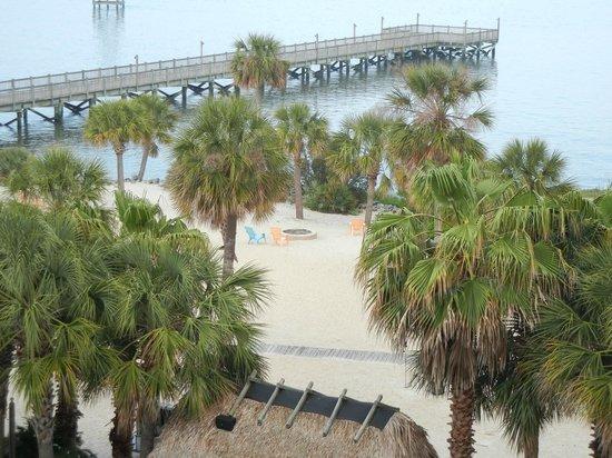 Charleston Harbor Resort & Marina: View of one of the piers