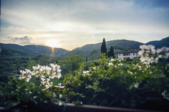 L'Ozio in Collina : View from our bedroom window