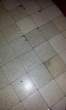 Hotel Erina: piso sucio