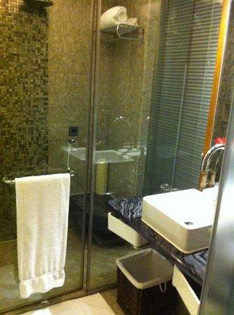 Haiyatt Garden Hotel (Chang An) : baño