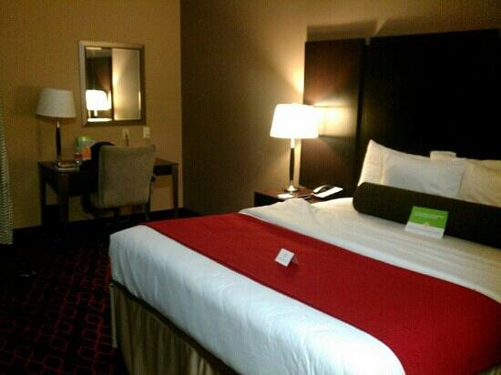 La Quinta Inn & Suites Conway: my room (standard one king room)