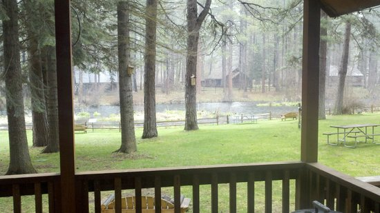 Cold Springs Resort and RV Park: View from the living room of the Spruce cabin