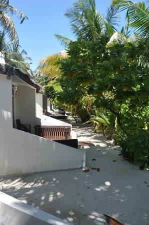 Cinnamon Hakuraa Huraa Maldives: beach bungalows