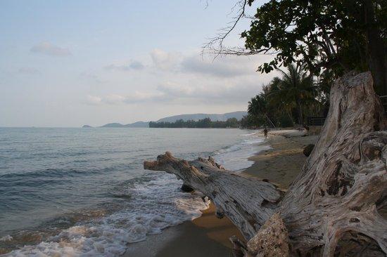 Nikki Beach Resort Koh Samui: The beach.