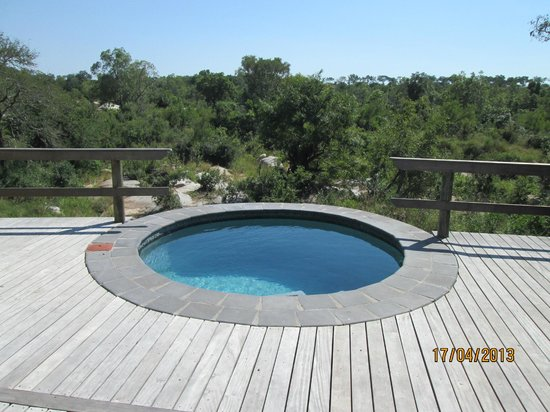 Londolozi Founders Camp: Wonderful pool to cool after the safari