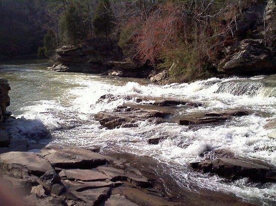 Things To Do in Turkey Creek Nature Preserve, Restaurants in Turkey Creek Nature Preserve