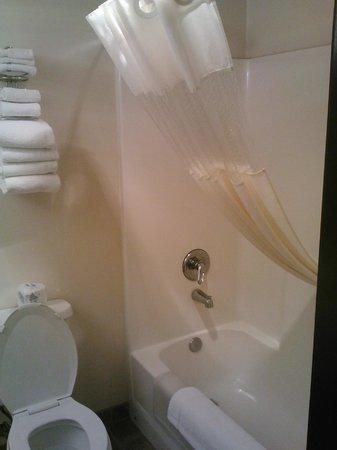 Cliff Castle Casino Hotel : Bathroom