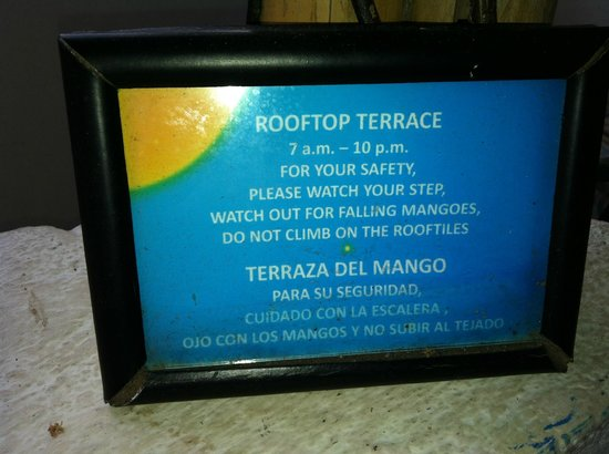 La Islita Boutique Hotel: Watch for falling mangoes!