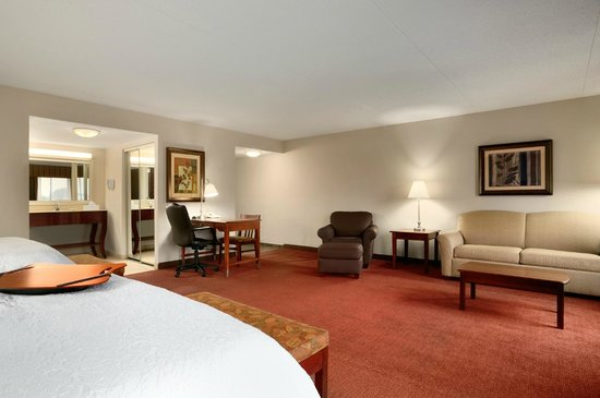 Hampton Inn Madison: Queen Suite
