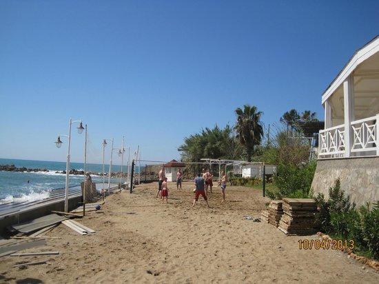 Jasmine Beach Resort: bahçe manzaralı odaların hemen önündeki  voleybol sahası