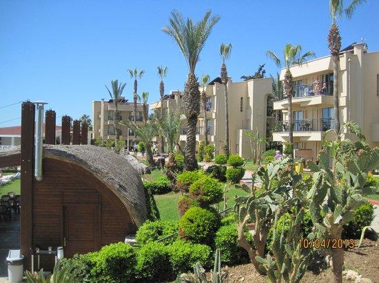 Jasmine Beach Resort: bahçe manzalaralı odalar