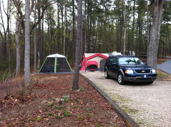 Campsite at FD Roosevelt State Park - Picture of Franklin