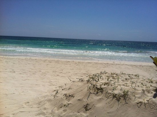 Casa de las Palmas: beach