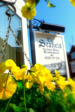 Seafield Guest House: Sunny Springtime