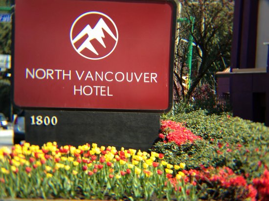 North Vancouver Hotel: Tulips