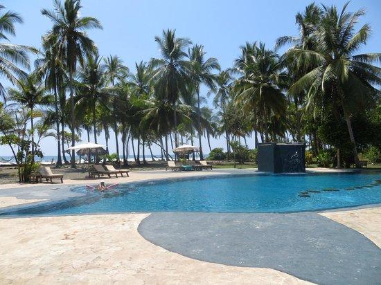 Clandestino Beach Resort: Pool looking toward beach beyond