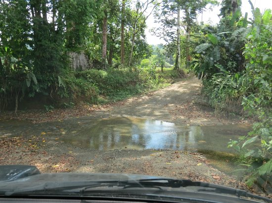 Casita Corcovado: Road into Drake Bay